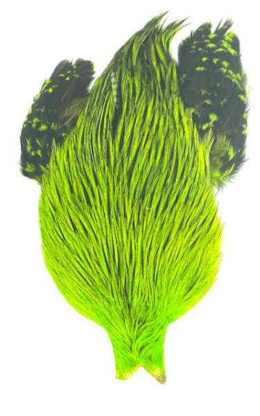 Whiting 4 B's Rooster Cape Badger dyed