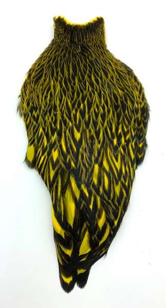 Whiting American Hen Cape Black Laced